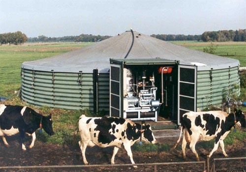 биогазовая установка для фермы крс