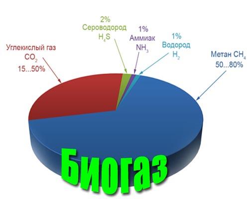 состав биогаза