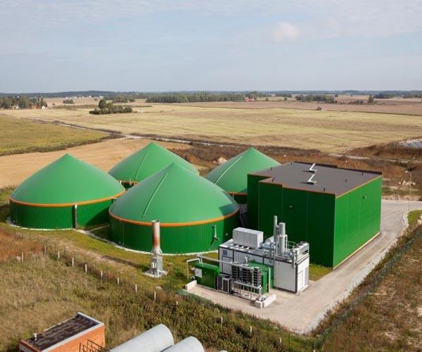 биогазовая установка для небольшой фермы