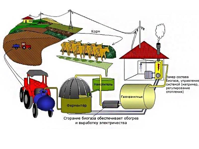 схема получения метана на ферме
